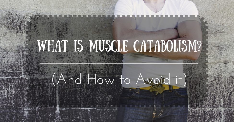 what-is-muscle-catabolism